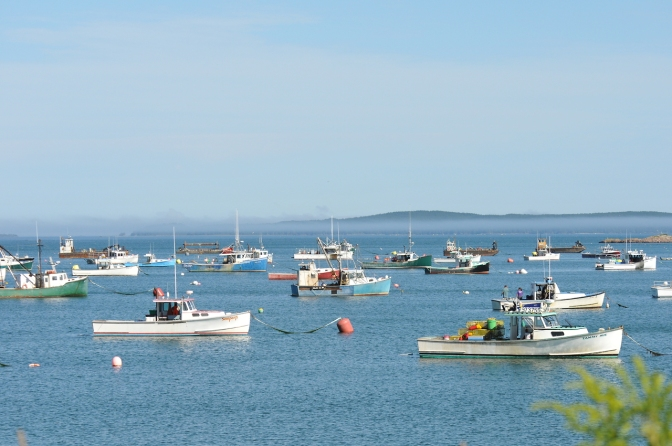 Beautiful Fishing Harbor in Maine